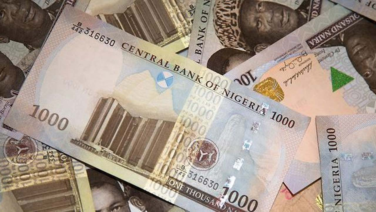 Naira Notes - Skills that can make you Money every Month
